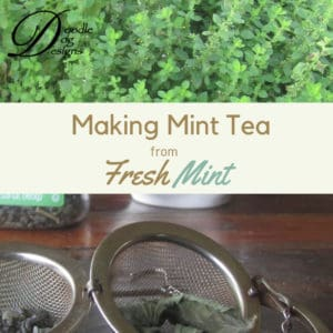 Drying mint leaves for tea